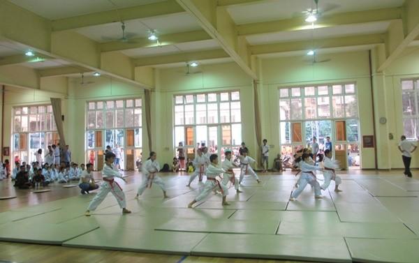 Môn thể thao thu hút nhiều bạn nhỏ là các lớp võ: Teakwondo, Vovinam, Aikido, Võ cổ truyền…