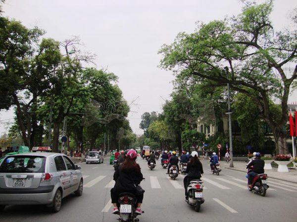 Phố Đinh Tiên Hoàng đoạn từ tháp Hòa Phong đến đền Bà Kiệu được đề xuất xây dựng 'Tuyến đường ghi danh' – ảnh Internet