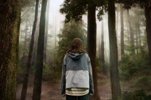 Giải trí cuối tuần: 'Quái thú rừng sâu' khiến khán giả khiếp sợ