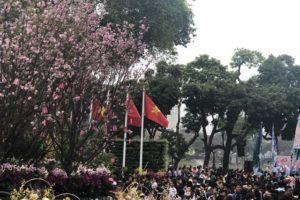 Lễ hội hoa anh đào Nhật Bản – Hà Nội 2019 sẽ khai mạc vào 29/3 tới