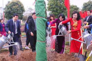Hà Nội đặt mục tiêu trồng 15.000 cây xanh trong phong trào Tết trồng cây Xuân Kỷ Hợi 2019