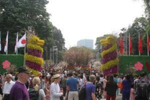 Nhiều hoạt động hấp dẫn thu hút người dân tại Lễ hội hoa anh đào Nhật Bản – Hà Nội