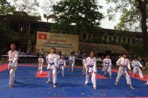 Giải võ Karate các câu lạc bộ huyện Đông Anh năm 2019