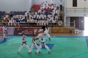 Chương Mỹ: Khai mạc giải Taekwondo năm 2019