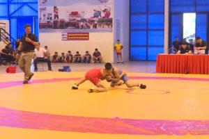 Hà Nội đứng nhất toàn đoàn Giải vô địch các lứa tuổi trẻ vật cổ điển, vật tự do toàn quốc năm 2019