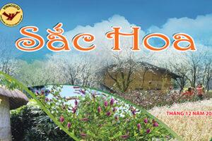 Nhiều hoạt động hấp dẫn chào mừng năm mới 2020 tại Làng Văn hóa, Du lịch các dân tộc Việt Nam