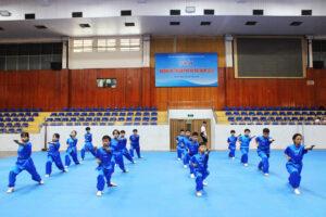 Gần 200 VĐV tranh tài tại giải Wushu hè TP Hà Nội 2020