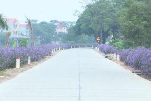 Huyện Thường Tín có thêm 30 đoạn đường nở hoa