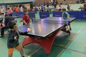 Thường Tín chú trọng phát triển sự nghiệp thể dục thể thao trong quần chúng nhân dân